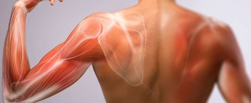 How Should I Treat My Pulled Muscle?